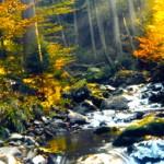 Tysklands skønne naturområder